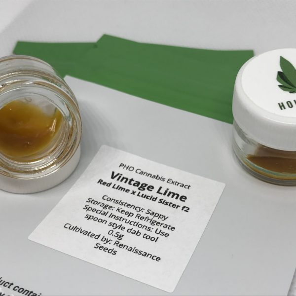 Vintage Lime Sugar Wax | Holistek