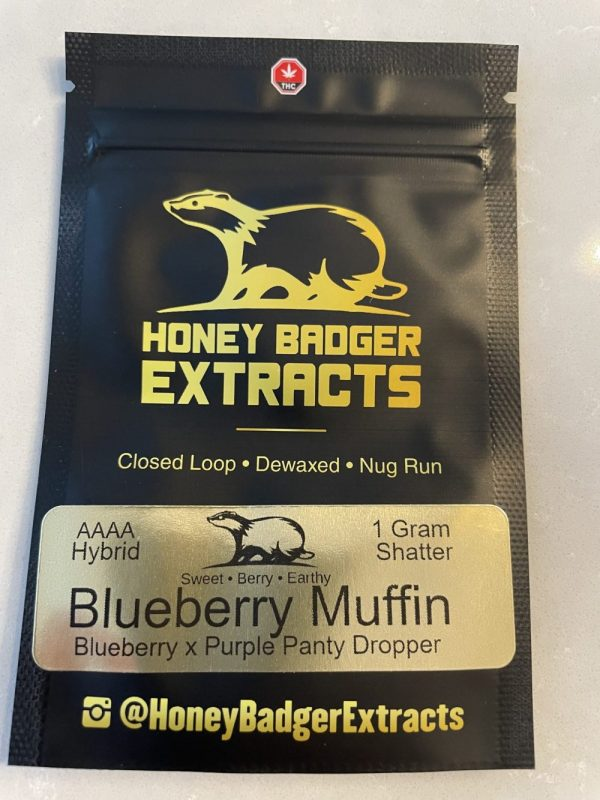Blueberry Muffin Shatter | Honey Badger Extract
